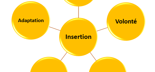 insertion 5